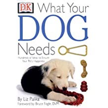 What Your Dog Needs