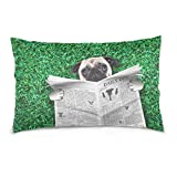 ALAZA Funny Pug Dog Read Newspaper Cotton Lint Pillow Case,Double-sided Printing Home Decor Pillowcase Size 16''x24'',for Bedroom Women Girl Boy