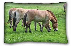 Custom Animal Custom Zippered Pillow Case 20x30 inches(one sides) from Surprise you suitable for King-bed