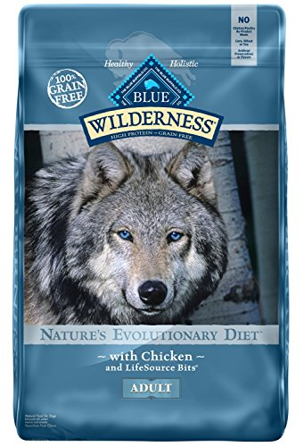 Top 9 Blue Buffalo Dog Food 11 Lb