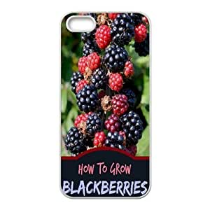 Fruit World CUSTOM Cover Case for iPhone 6 plus 5.5 LMc-79314 at LaiMc