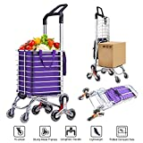 AmnoAmno Folding Shopping Cart- Folding Cart Holds Up to 36L - Great for Shopping, Camping, Sport Events - Durable Folding Design for Easy Storage