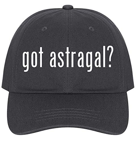 The Town Butler got Astragal? - A Nice Comfortable Adjustable Dad Hat Cap, Dark Grey