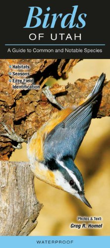 Birds of Utah: A Guide to Common & Notable Species (Common and Notable ()