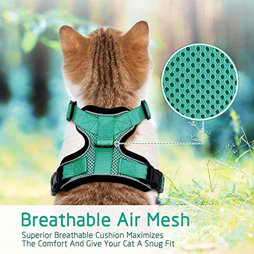 rabbitgoo Cat Harness and Leash for Walking, Escape Proof Soft Adjustable Vest Harnesses for Cats, Easy Control Breathable Reflective Strips Jacket 28