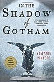 In the Shadow of Gotham, Stefanie Pintoff, 0312544901
