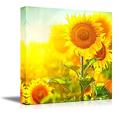 Canvas Prints Wall Art - Beautiful Sunflowers Blooming on The Field Growing Sunflower | Modern Wall Decor/Home Decoration Stretched Gallery Canvas Wrap Giclee Print & Ready to Hang - 24