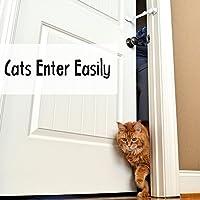 Door Buddy - Combo de Bloqueo de Seguridad Para Puerta con Cierre Ajustable y Tope de Puerta. Acceso Fácil Para Gatos y Adultos, Impide el Paso al Perro y ...
