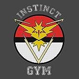 Pokemon-Go-Team-Instinct-Gym-Kids-T-Shirt