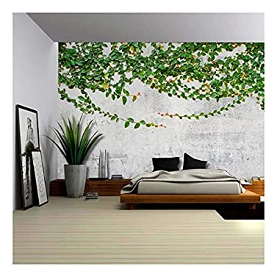 Crafted to Perfection, Stunning Expert Craftsmanship, Green Vines Draping from a Grey Pavement Wall Wall Mural Removable Wallpaper