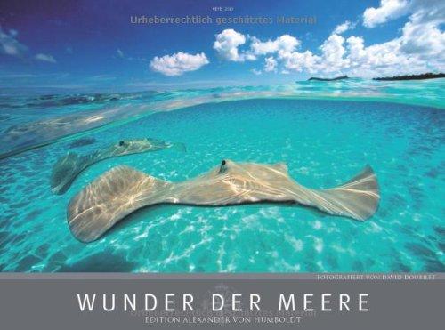 Wunder der Meere 2013
