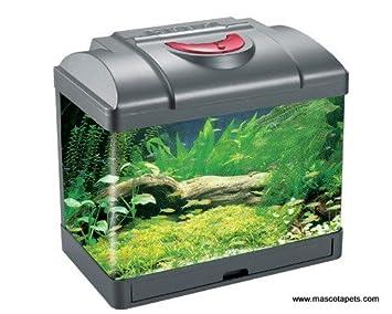 Kit acuario 10 litros negro Led: Amazon.es: Productos para mascotas