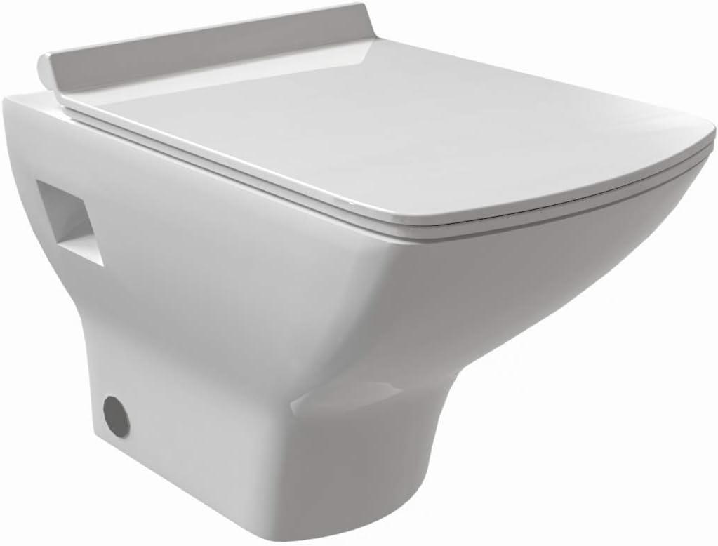 Aqua Bagno taharet Diseño Ducha Inodoro de cerámica – Inodoro de pared con función de bidé Íntima ducha: Amazon.es: Bricolaje y herramientas