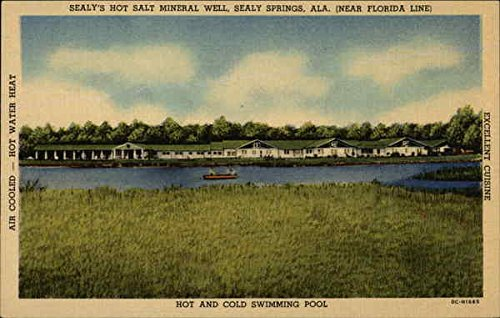 sealys-hot-salt-mineral-well-near-florida-line-hot-and-cold-swimming-pool-original-vintage-postcard