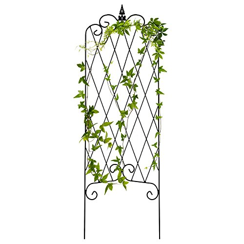 Best Choice Products 46x15in Rustproof Iron Lattice Garden Trellis Fence Panel for Climbing Plants w/Finial - Black Rose Lattice