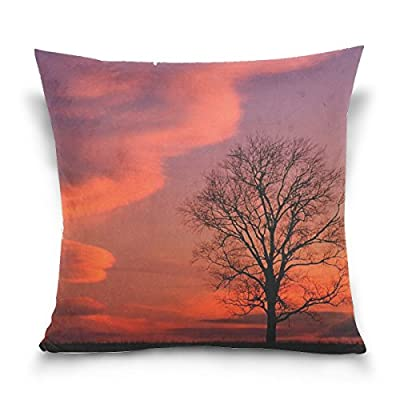 Kentucky Evening Decline Clouds Tree Sky Throw Pillow Case Decorative Cushion Cover Square Pillowcase, Kentucky Evening Decline Clouds Tree Sky Sofa Bed Pillow Case Cover 18 X 18 Inch Twin Sides