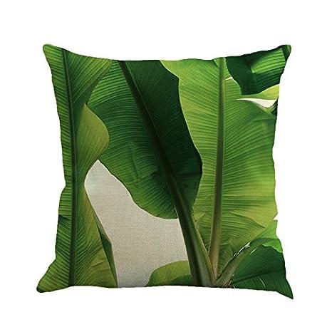 Amazon.com: sunone11 Tropical Rain Forest plátano Leaves ...