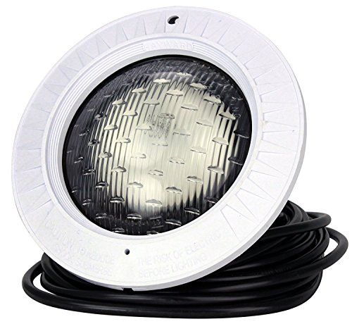 Hayward SP0583L30 Astrolite Underwater Lighting Thermoplastic Face Rim 500 Watt, 110 Volt, 30 Ft. Cord ()