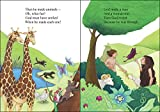 The Rhyme Bible Storybook for Little Ones