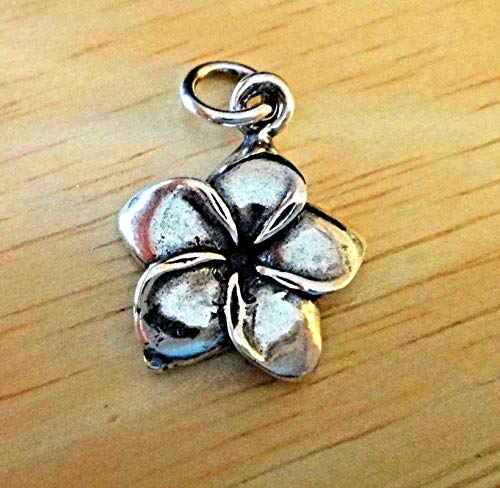 Mm 15 Plumeria Pendant (Sterling Silver 3D 17x15mm Plumeria Flower 5 Petal Charm Vintage Crafting Pendant Jewelry Making Supplies - DIY for Necklace Bracelet Accessories by CharmingSS)