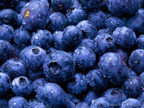 BLUEBERRIES FRESH PRODUCE FRUIT VEGETABLES PINT 10 OZ