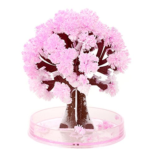 Peoria Magic Crystal Growing Sakura Paper Tree Cherry Tree Novelty Toys Children's Gifts Magic Bonsai