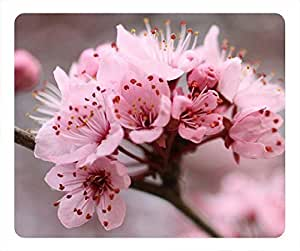 Pink Plum blossom DIY oblong mouse pad by Cases & Mousepads by icecream design