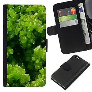 All Phone Most Case / Oferta Especial Cáscara Funda de cuero Monedero Cubierta de proteccion Caso / Wallet Case for Apple Iphone 5C // Spring Green Plant Summer Sun