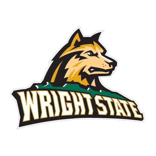 Wright State Medium Decal 'Wright State Official Logo' by CollegeFanGear
