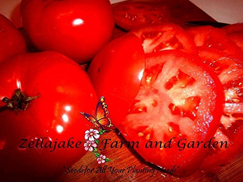 Beefsteak Tomato Seeds Many Sizes to 2LB Easy Grow Heirloom Classic 95 (10) by nk_zel