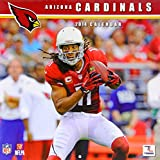 Turner - Perfect Timing 2014 Arizona Cardinals Team Wall Calendar, 12 x 12 Inches (8011466)