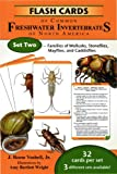 Flash Cards of Common Freshwater Invertebrates of North America Set 2, J. Reese Voshell, 0939923564