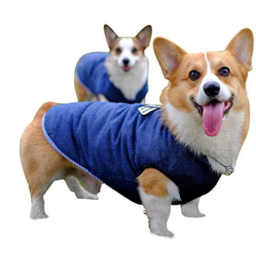 [Corgi Cozy Waterproof Windproof Dog Vest Winter Coat Warm for Cold Jacketwith Furry Collar] (Costumes For Tall People)