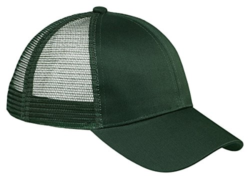 Big Accessories Bagedge (Big Accessories BAGedge 6-Panel Structured Trucker Cap, Light Forest, One Size)