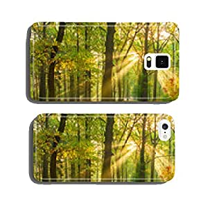 bright rays of the sun in the morning empty forest cell phone cover case iPhone6 Plus