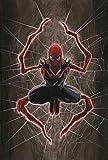 Spiderman Vols