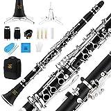 Eastar B Flat Clarinet Wind Band ECL-400