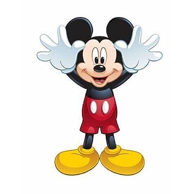 """WindNSun 29"""" Disney Mickey Mouse Clubhouse Skypals Nylon Kite: Toys & Games"""