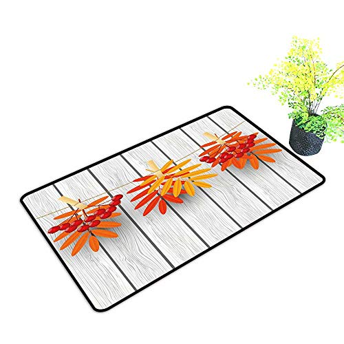 Diycon Non-Slip Door mat Rowan Vibrant Autumn Leaves and Red Fruits Hanged with Clothes Pin on a String Print W35 xL59 Easy to Clean Carpet Grey Orange Red -