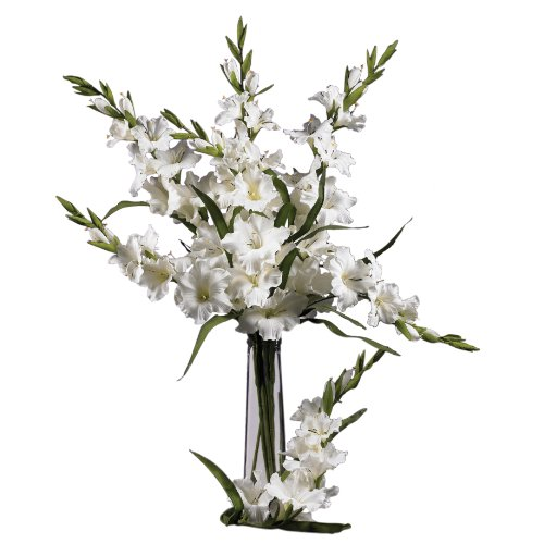 """Nearly Natural 2122-WH 36"""" Gladiola Stem (Set of 12) White"""