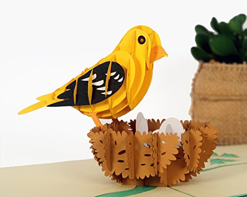 CUTPOPUP Grosbeak Bird 3D Pop-Up Greeting Card – Intricate Design, Hand Assembled Ideal for Easter, Thanks Giving, Baby Showers, House Warming, Birthdays, Wedding or Anniversaries – With Card - Card Gift Balance Wish