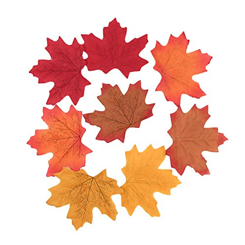 - Sun Goodtimes Package of Approximately 200 Assorted Rich Fall Colored Silk Maple Leaves for Weddings, Events and Decorating