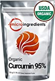 Micro Ingredients USDA Organic Curcumin 95% (Turmeric Curcumin Extract) Powder - Powerful Anti-Inflammatory Antioxidant (50 gram / 1.76 oz) Natural Curcumin Supplements