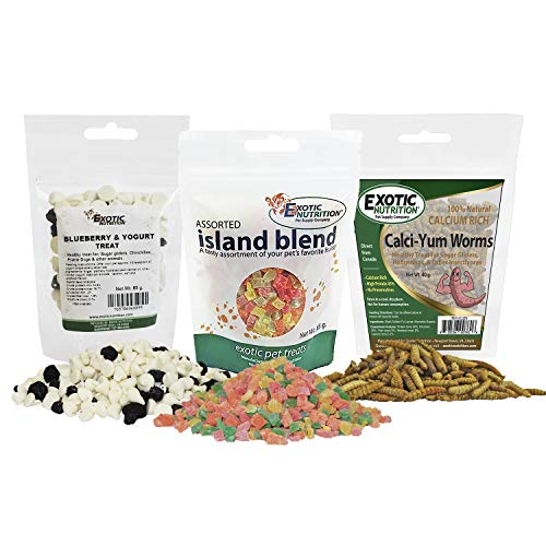 Treat Assortment 3 Pack - Pet Treat with Mix of Dried Fruits, Yogurt, Dried Insects, & Other Crunchies - For Sugar Gliders, Hedgehogs, Squirrels, Rabbits, Marmosets, Rats, Hamsters - Sample Variety