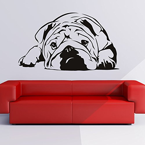 azutura English Bulldog Wall Sticker Pets Dogs Wall Decal Kids Vets Home Decor available in 5 Sizes and 25 Colours X-Large Black