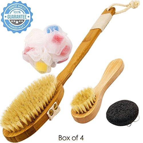 Hairizone Nanmu Bamboo Body Brush Spa Kit Includes Boar