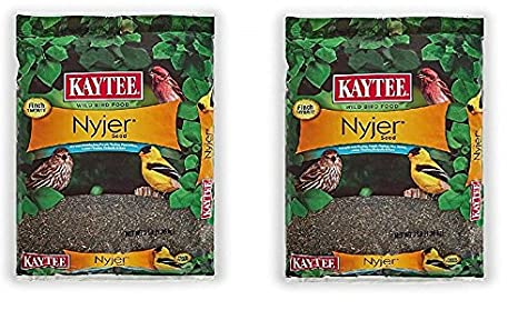 Kaytee Nyjer Thistle Seed Kaytee Nyjer Seed 20-lb 100033693