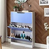 ALUS- Creative Shoebox Dust-proof Shoe Cabinet Large Capacity Entrance European Style Shoes Racks Door Cabinets ( Color : Blue )