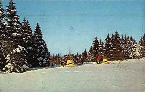 Snomobiling in Winter Wonderland Other Sports Original Vintage Postcard from CardCow Vintage Postcards