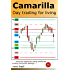 Camarilla day trading for living: One can make far more profits by trading Camarilla Swings...